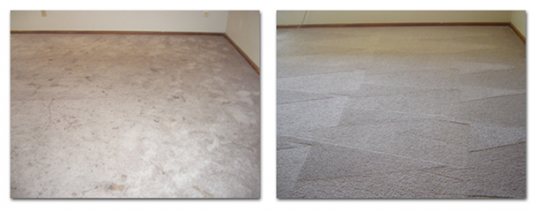 carpet cleaning services Lynnwood